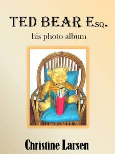 Ted Bear cover 2